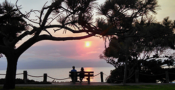 A couple sitting on a bench watching sunset at a waterfront, silhouette of them and trees around
